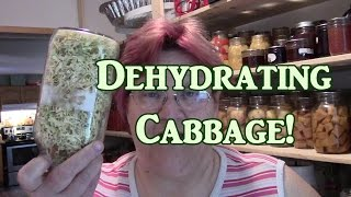 Dehydrating Cabbage!